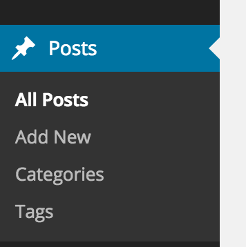 Posts then Add New